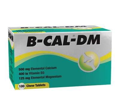 Picture of B-Cal DM Chewable Tablets 100's