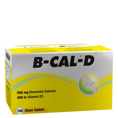 Picture of B-Cal-D Chewable Tablets 100's