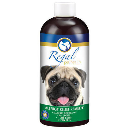Picture of Regal Allergy Relief Remedy 400ml